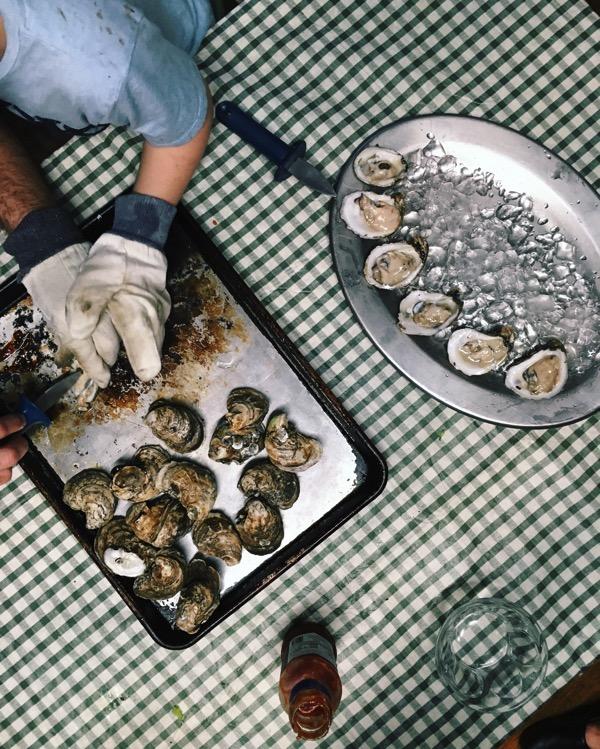 Aesthetics of Joy Georgia oysters
